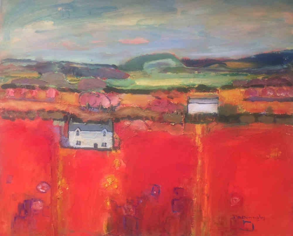 Railway Cutting Anglesey- Judith Donaghy